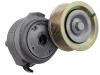 Belt Tensioner:460 200 09 70
